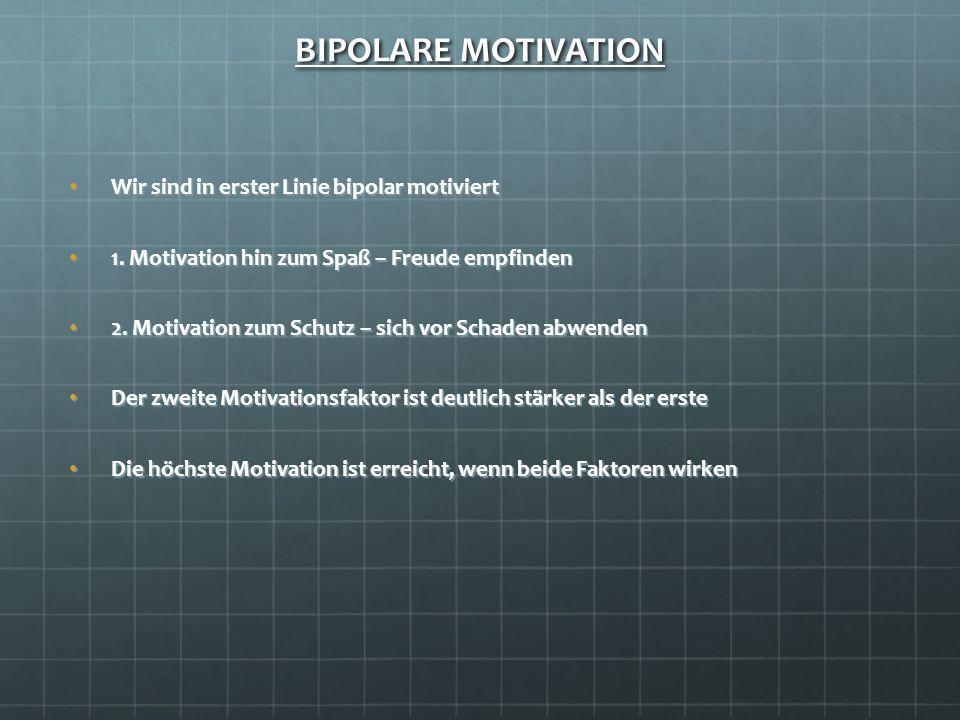 BIPOLARE MOTIVATION Wir sind in erster Linie bipolar motiviert
