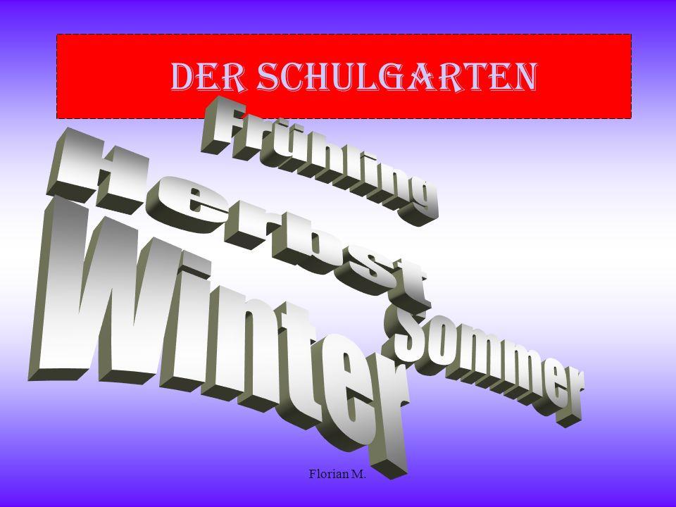 Der Schulgarten Frühling Herbst Winter Sommer Florian M.