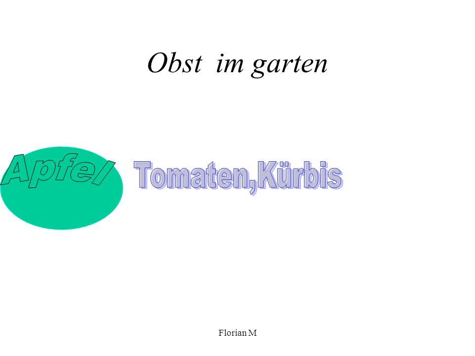 Obst im garten Tomaten,Kürbis Apfel Florian M