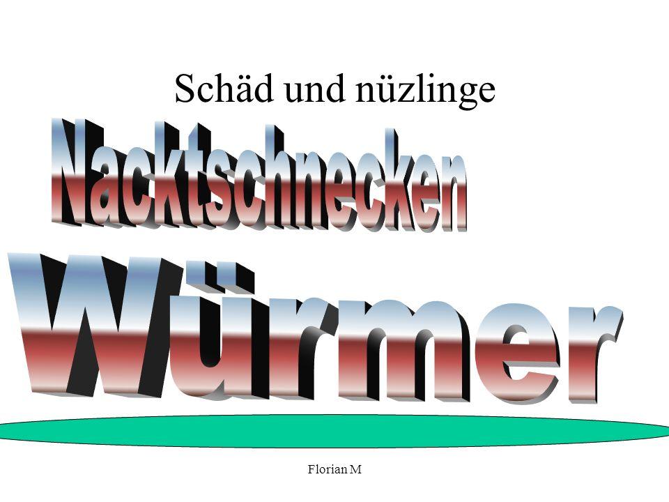 Schäd und nüzlinge Nacktschnecken Würmer Florian M