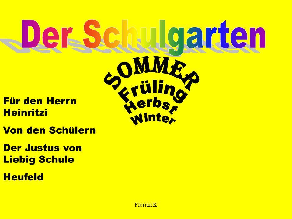 Sommer Der Schulgarten Für den Herrn Heinritzi Von den Schülern