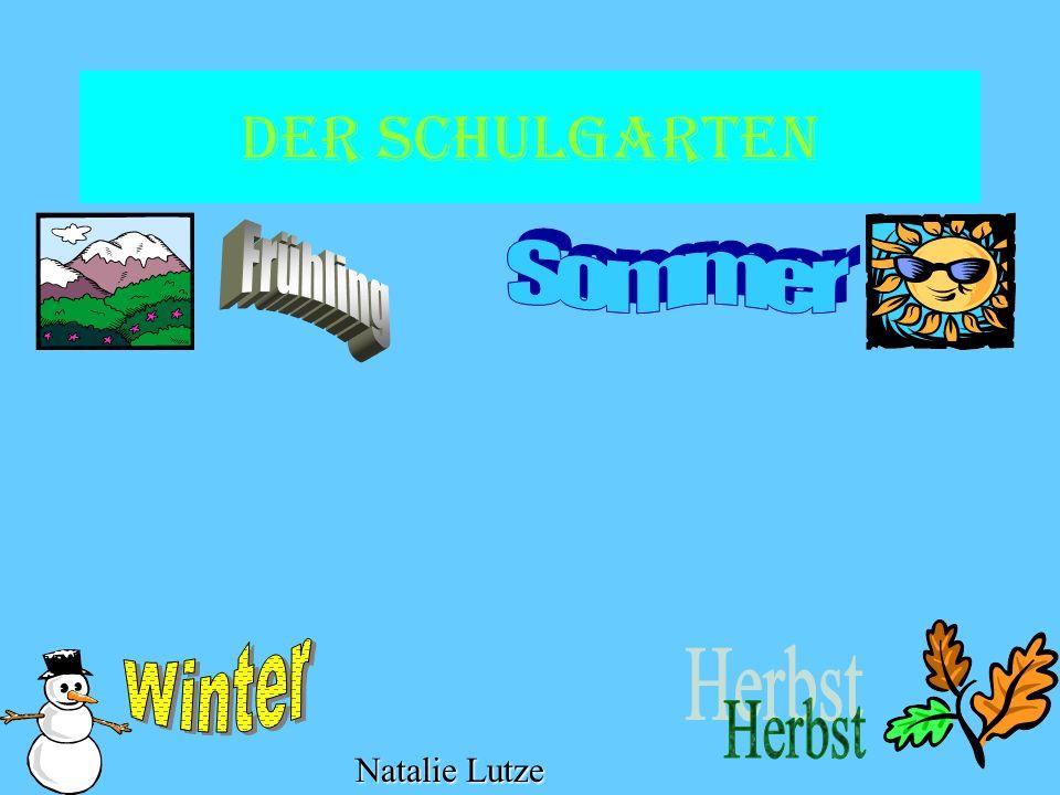 Der Schulgarten Frühling Sommer Winter Herbst Natalie Lutze