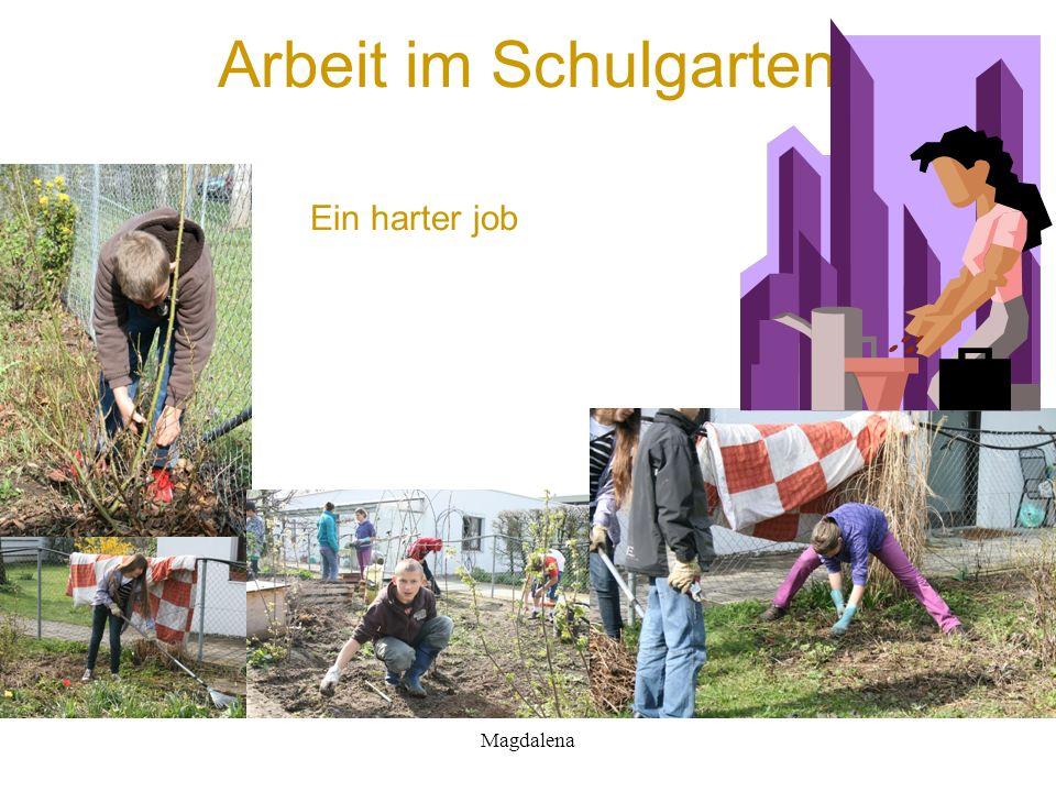 Arbeit im Schulgarten Ein harter job Magdalena