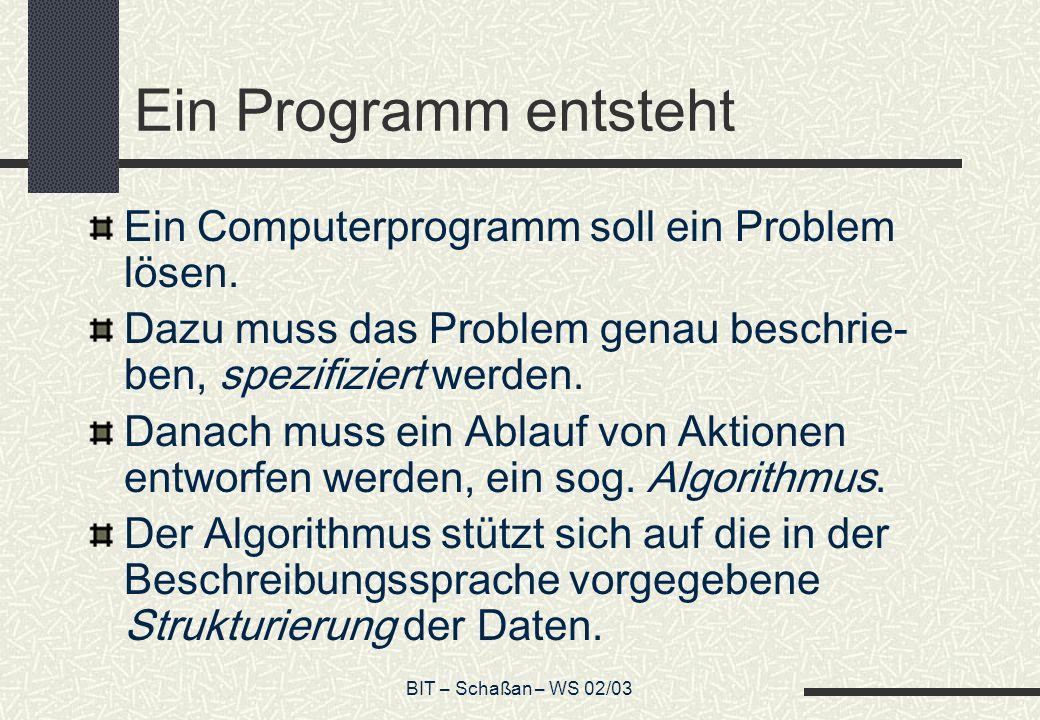 Ein Programm entsteht Ein Computerprogramm soll ein Problem lösen.