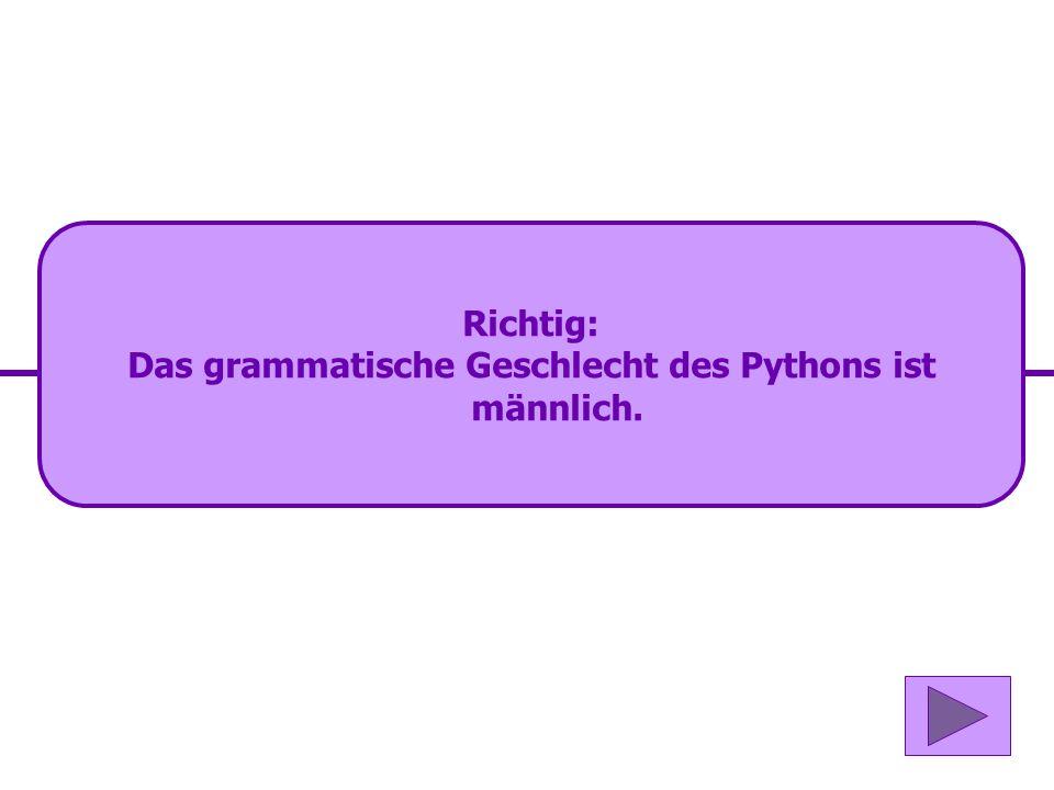 Das grammatische Geschlecht des Pythons ist männlich.