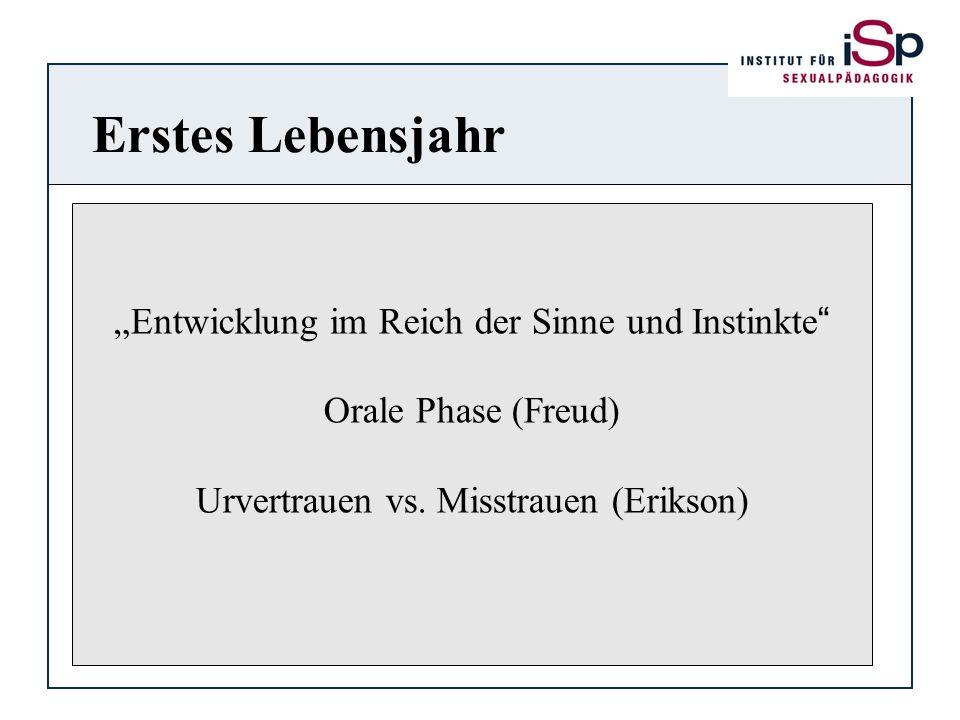 """Erstes Lebensjahr """"Entwicklung im Reich der Sinne und Instinkte"""