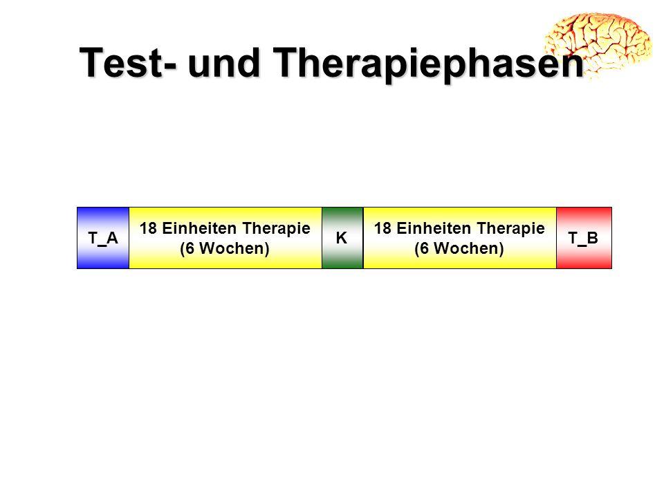 Test- und Therapiephasen