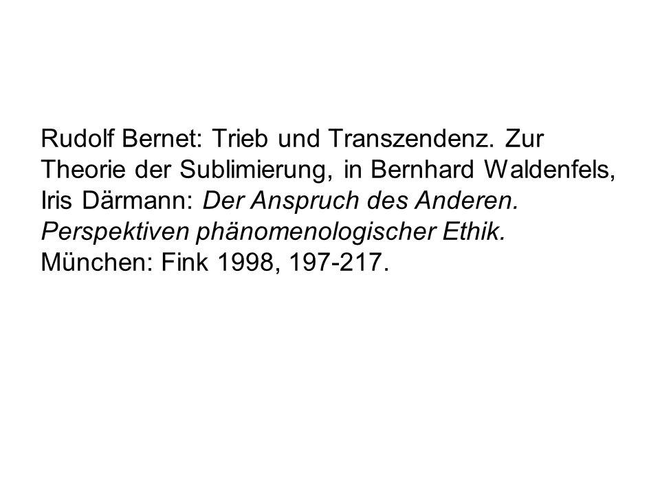 Rudolf Bernet: Trieb und Transzendenz