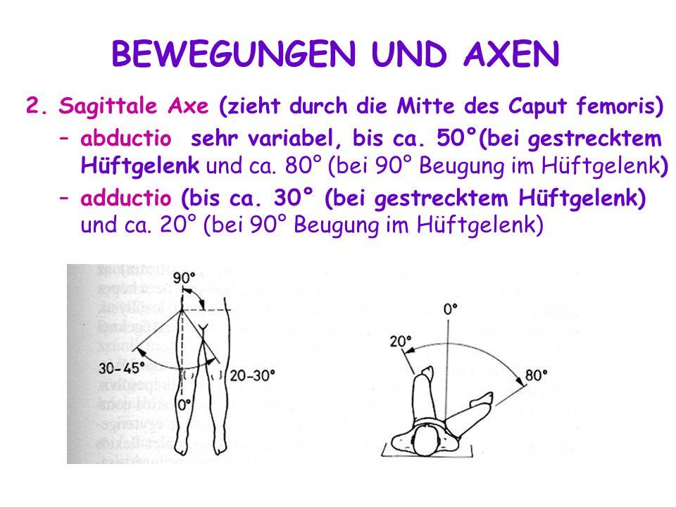 Erfreut Hüftgelenk Bilder Galerie - Menschliche Anatomie Bilder ...