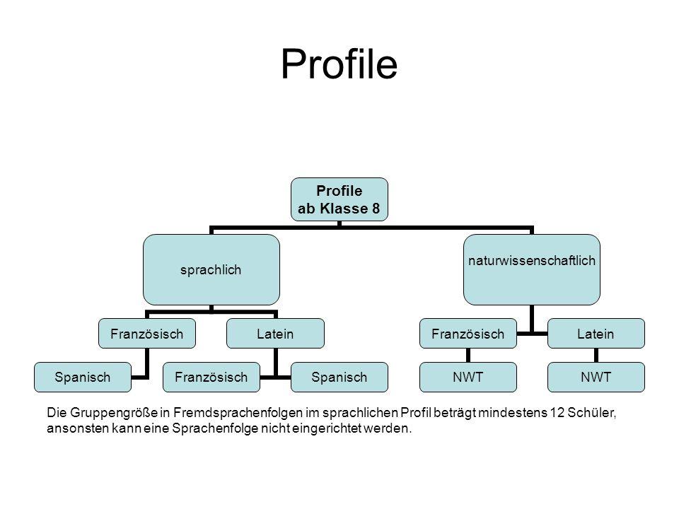 Profile Die Gruppengröße in Fremdsprachenfolgen im sprachlichen Profil beträgt mindestens 12 Schüler,