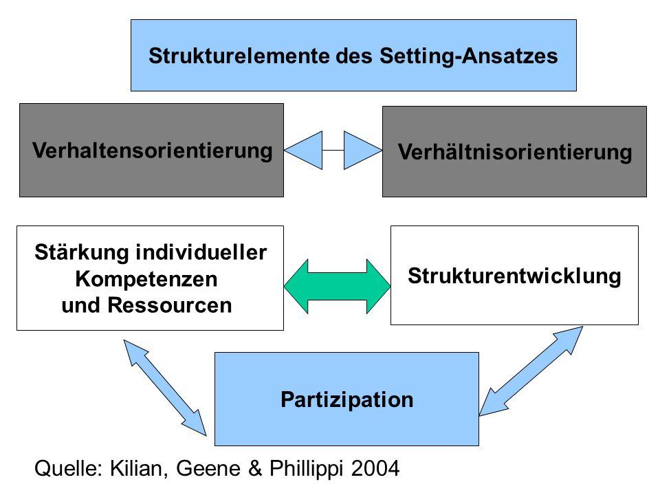 Strukturelemente des Setting-Ansatzes