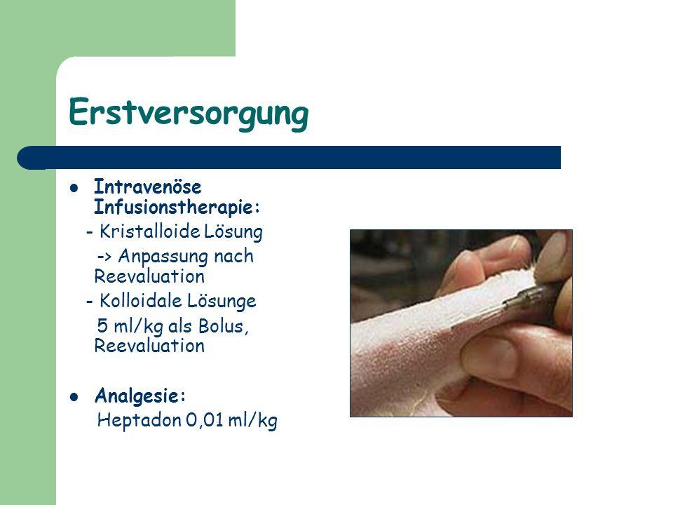 Erstversorgung Intravenöse Infusionstherapie: - Kristalloide Lösung