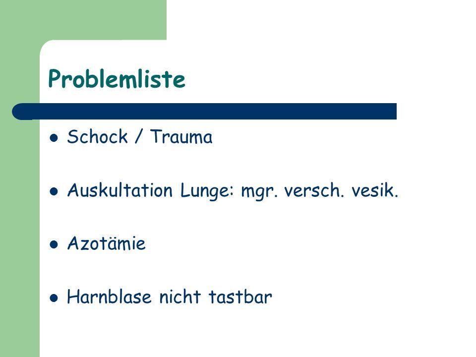 Problemliste Schock / Trauma Auskultation Lunge: mgr. versch. vesik.