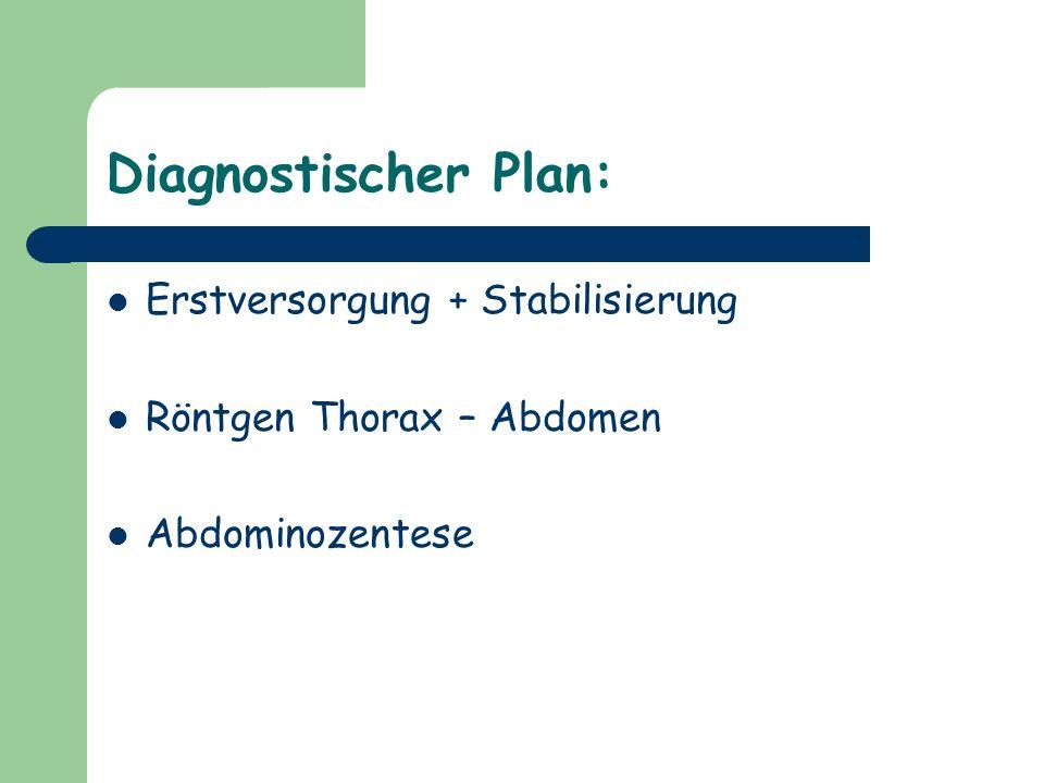 Diagnostischer Plan: Erstversorgung + Stabilisierung