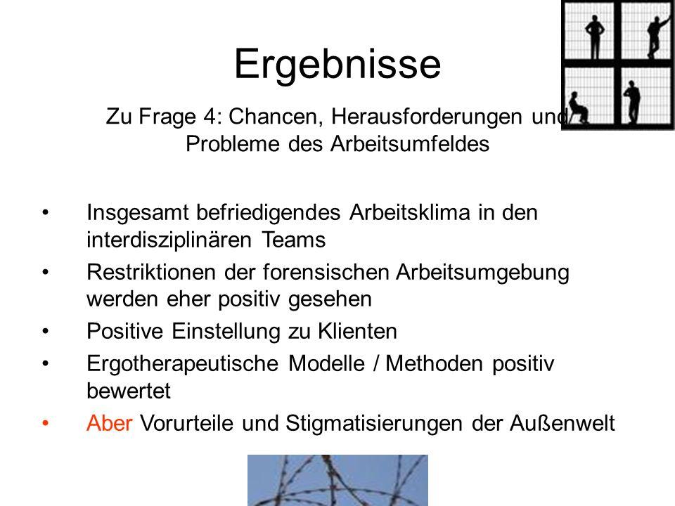 Ergebnisse Zu Frage 4: Chancen, Herausforderungen und
