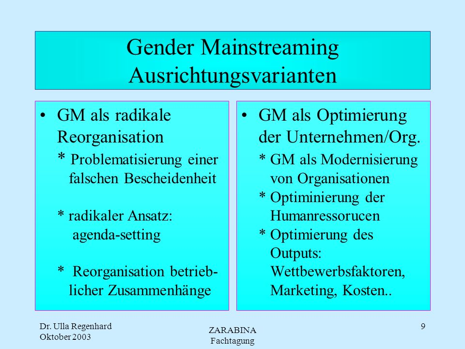Gender Mainstreaming Ausrichtungsvarianten
