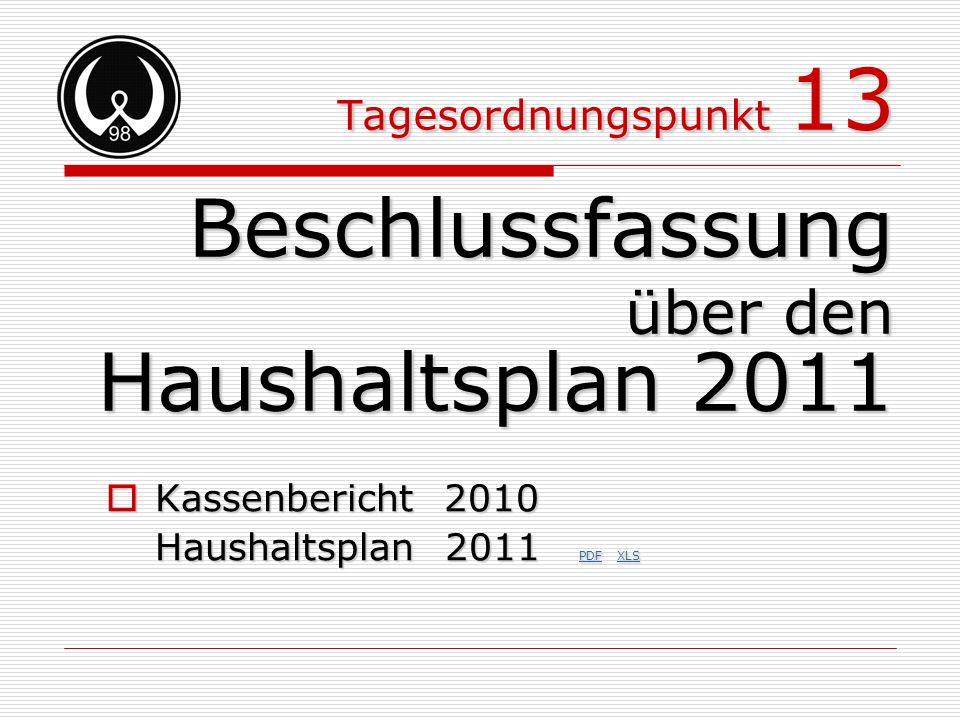 Beschlussfassung Haushaltsplan 2011 über den Tagesordnungspunkt 13