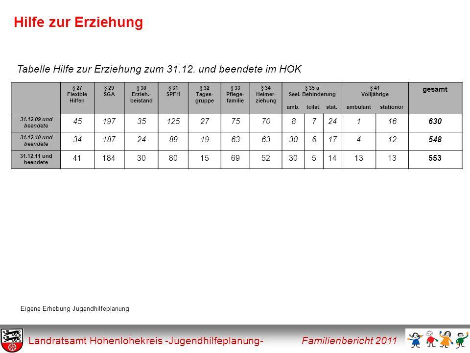 Hilfe zur Erziehung Tabelle Hilfe zur Erziehung zum 31.12. und beendete im HOK. § 27. Flexible. Hilfen.