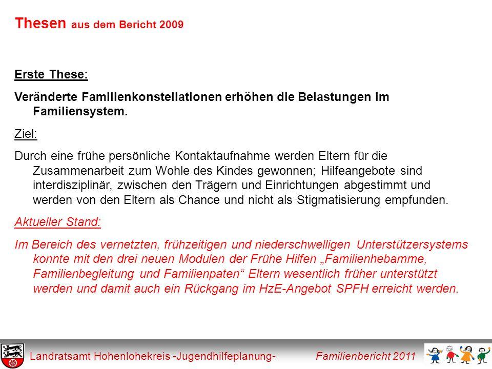 Thesen aus dem Bericht 2009 Erste These: