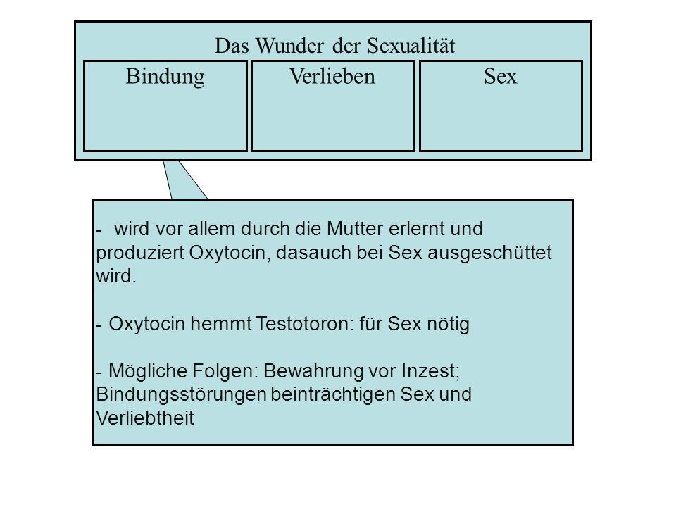 Das Wunder der Sexualität