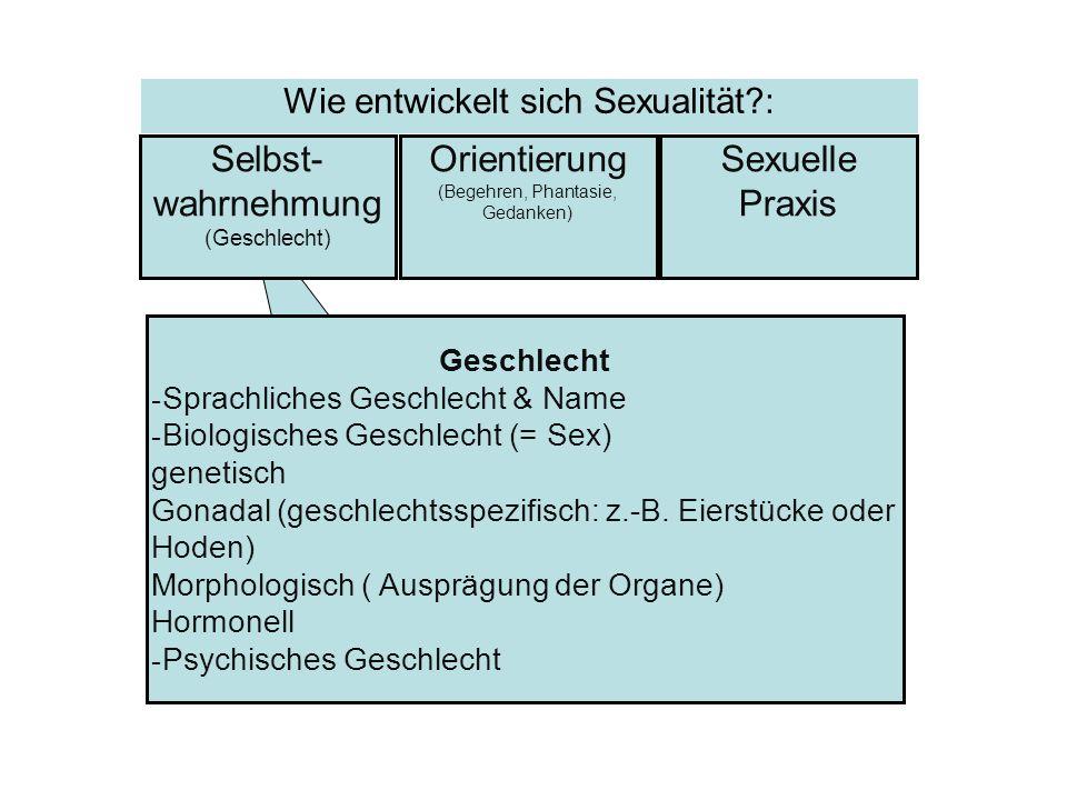 Selbst-wahrnehmung Orientierung Sexuelle Praxis