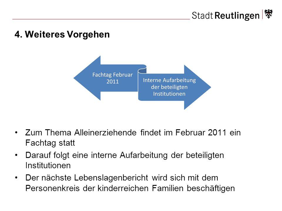 4. Weiteres Vorgehen Zum Thema Alleinerziehende findet im Februar 2011 ein Fachtag statt.