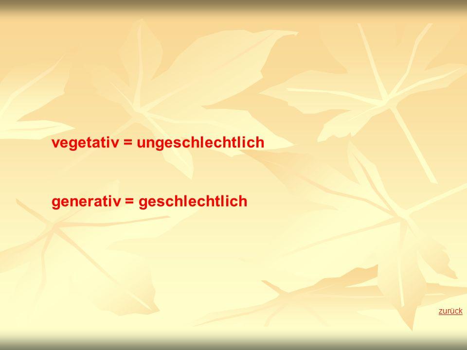 vegetativ = ungeschlechtlich