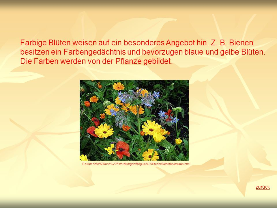 Die Farben werden von der Pflanze gebildet.