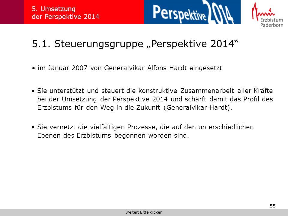 """5.1. Steuerungsgruppe """"Perspektive 2014"""