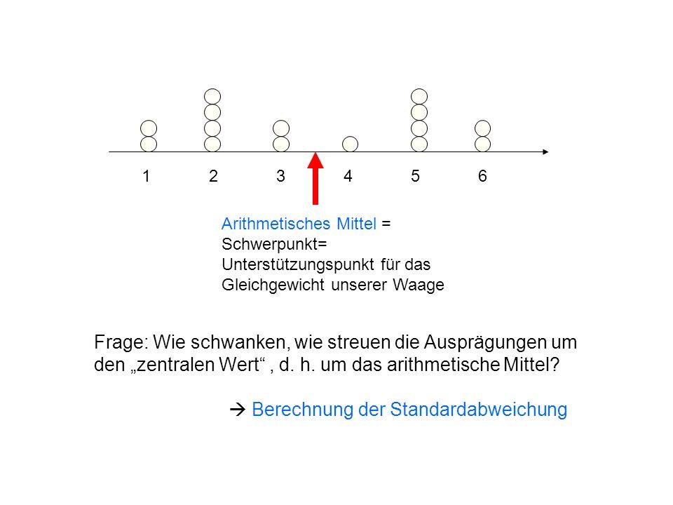 1 2 3 4 5 6 Arithmetisches Mittel = Schwerpunkt= Unterstützungspunkt für das Gleichgewicht unserer Waage.