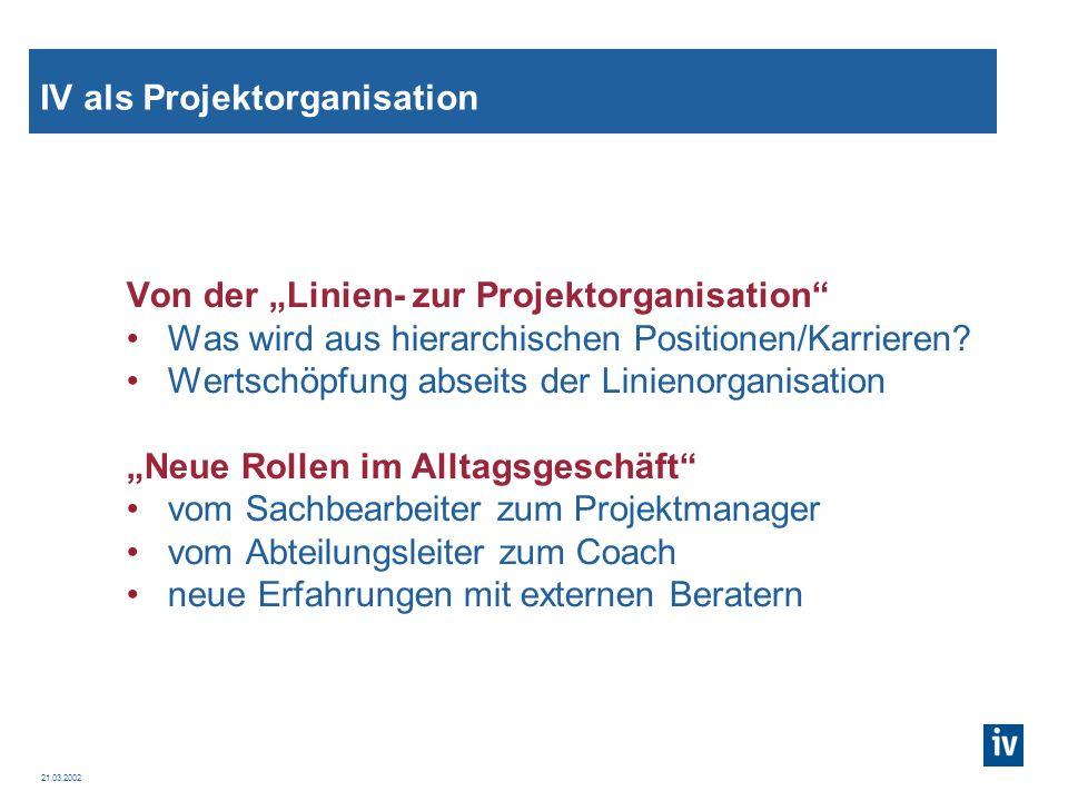 IV als Projektorganisation