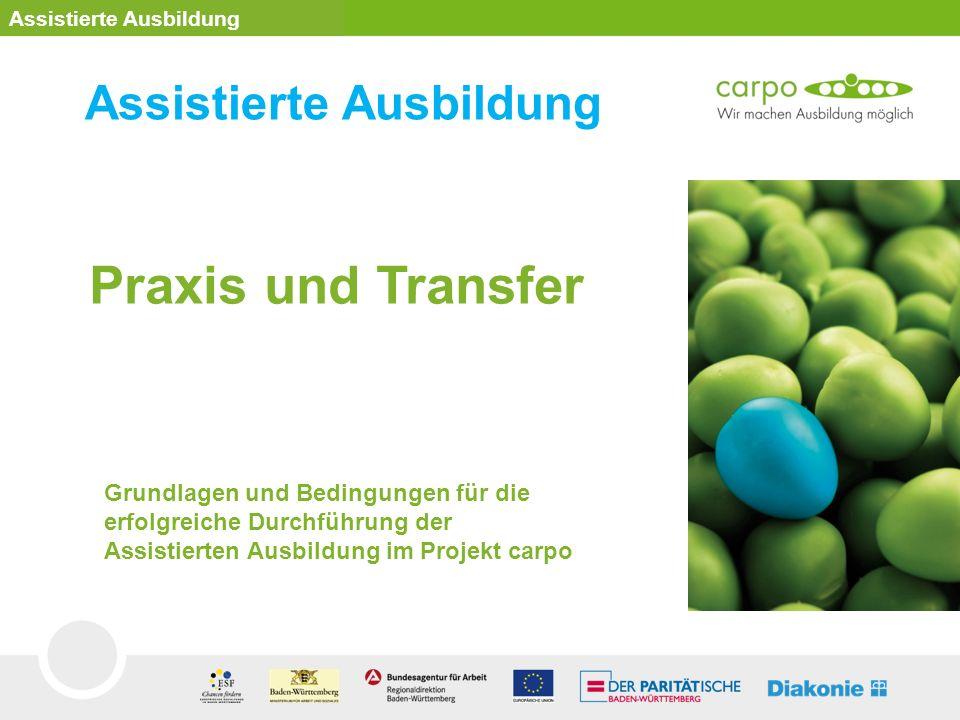 Praxis und Transfer Assistierte Ausbildung