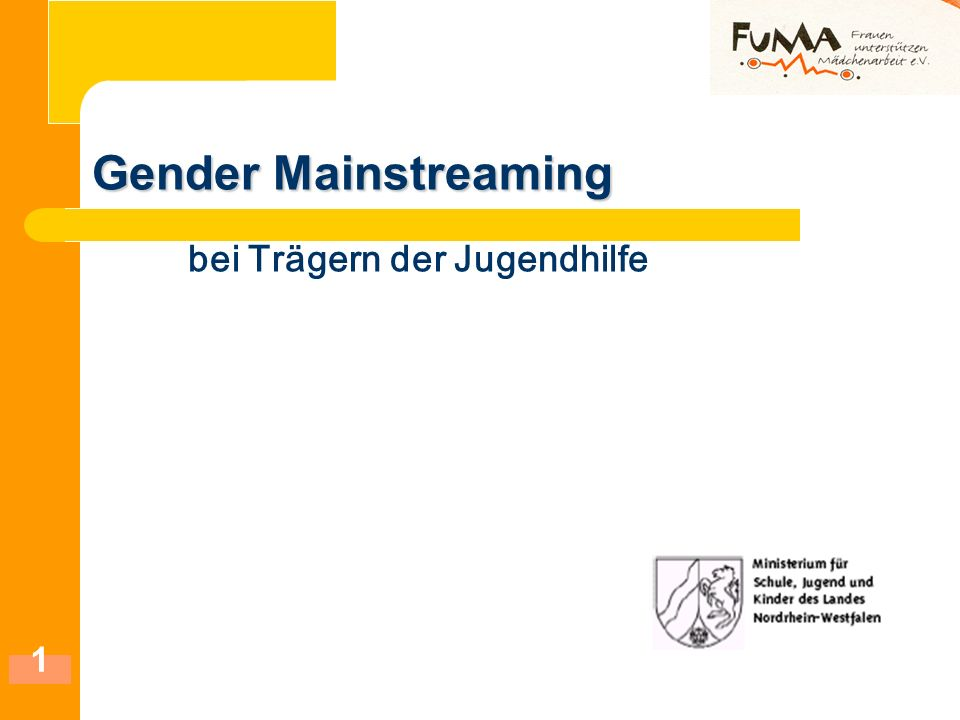 Gender Mainstreaming bei Trägern der Jugendhilfe