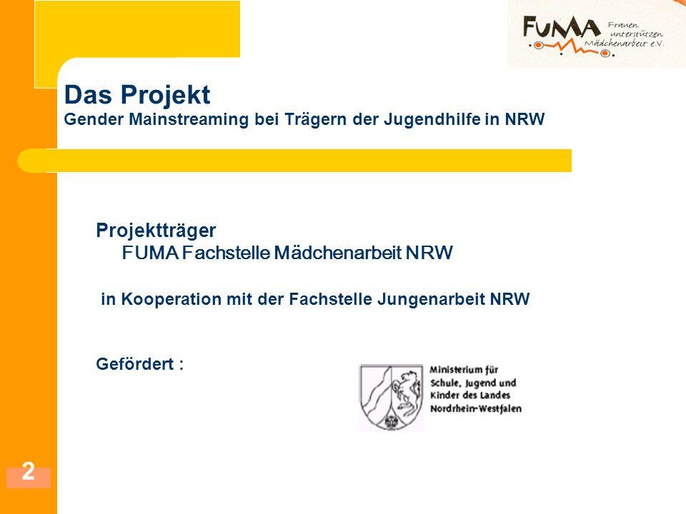 Das Projekt Gender Mainstreaming bei Trägern der Jugendhilfe in NRW