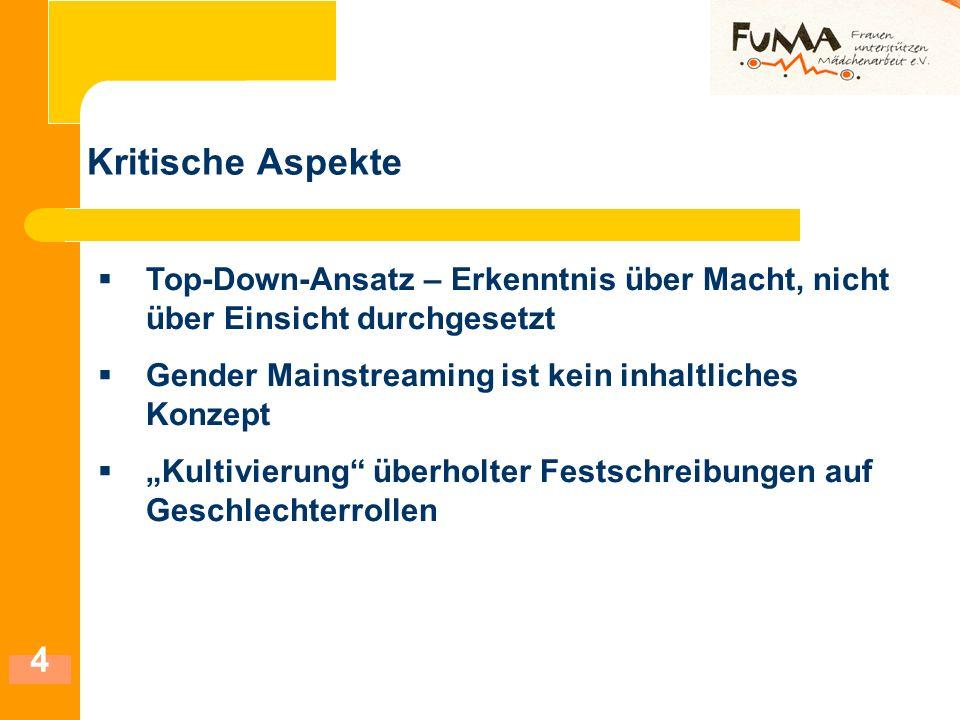 Kritische Aspekte Top-Down-Ansatz – Erkenntnis über Macht, nicht über Einsicht durchgesetzt. Gender Mainstreaming ist kein inhaltliches Konzept.