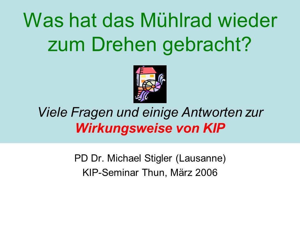 PD Dr. Michael Stigler (Lausanne) KIP-Seminar Thun, März 2006