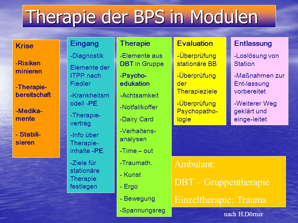 Therapie der BPS in Modulen