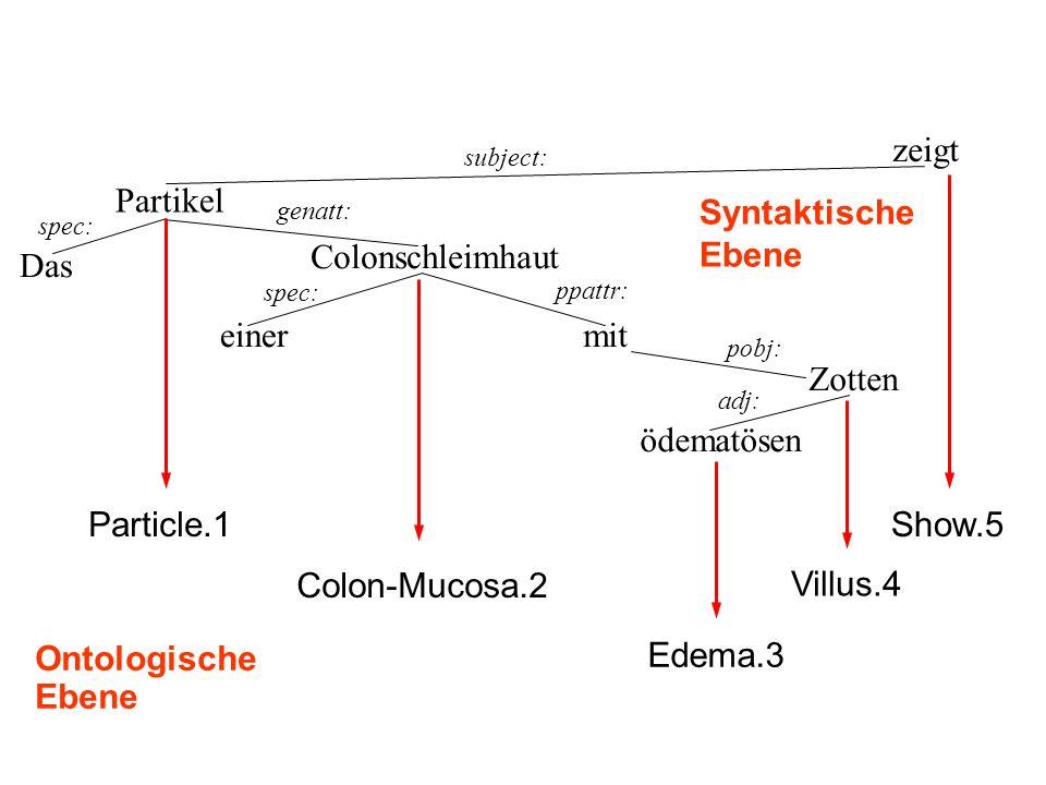 zeigt Partikel Show.5 Syntaktische Ebene Particle.1 Colonschleimhaut