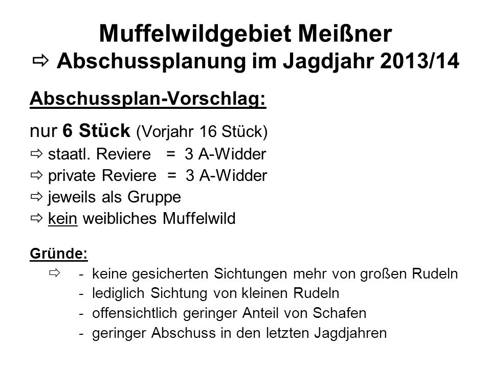 Muffelwildgebiet Meißner  Abschussplanung im Jagdjahr 2013/14