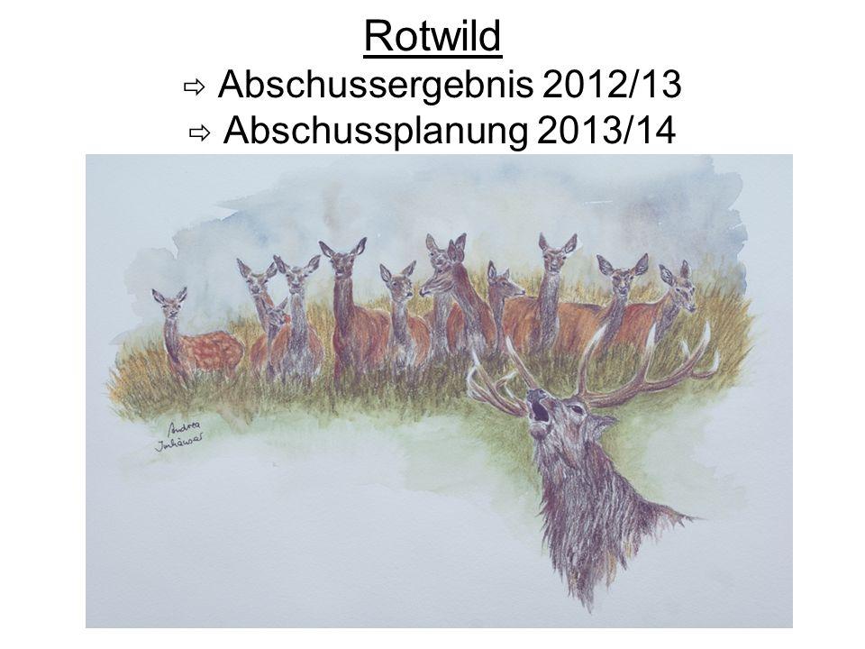 Rotwild  Abschussergebnis 2012/13  Abschussplanung 2013/14
