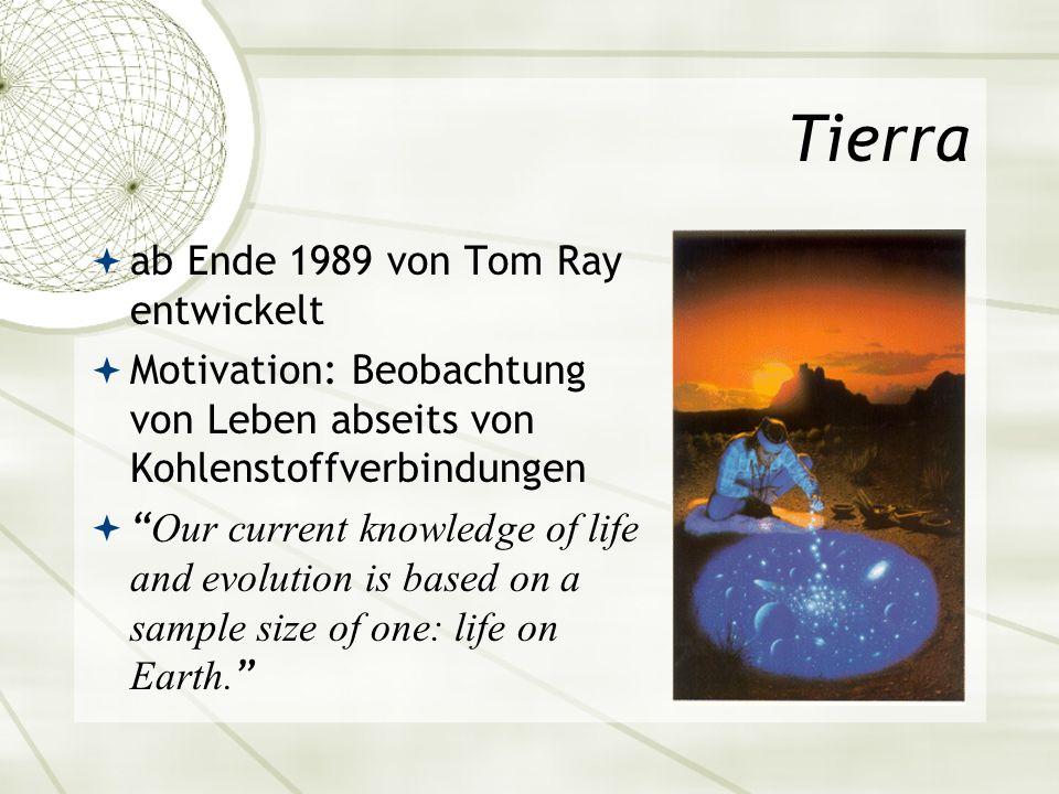 Tierra ab Ende 1989 von Tom Ray entwickelt