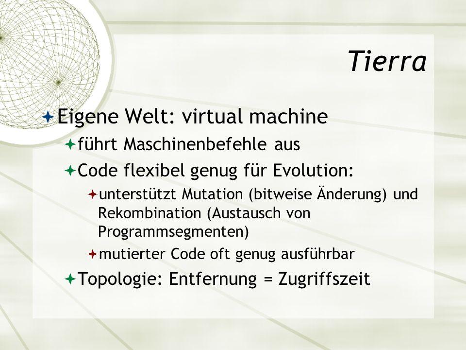 Tierra Eigene Welt: virtual machine führt Maschinenbefehle aus
