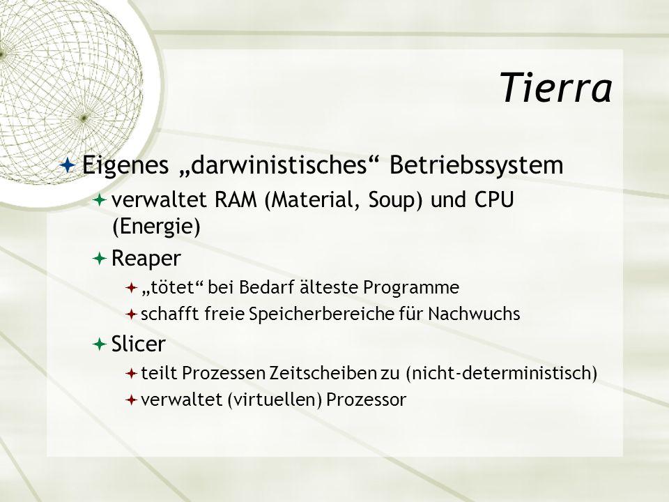 """Tierra Eigenes """"darwinistisches Betriebssystem"""