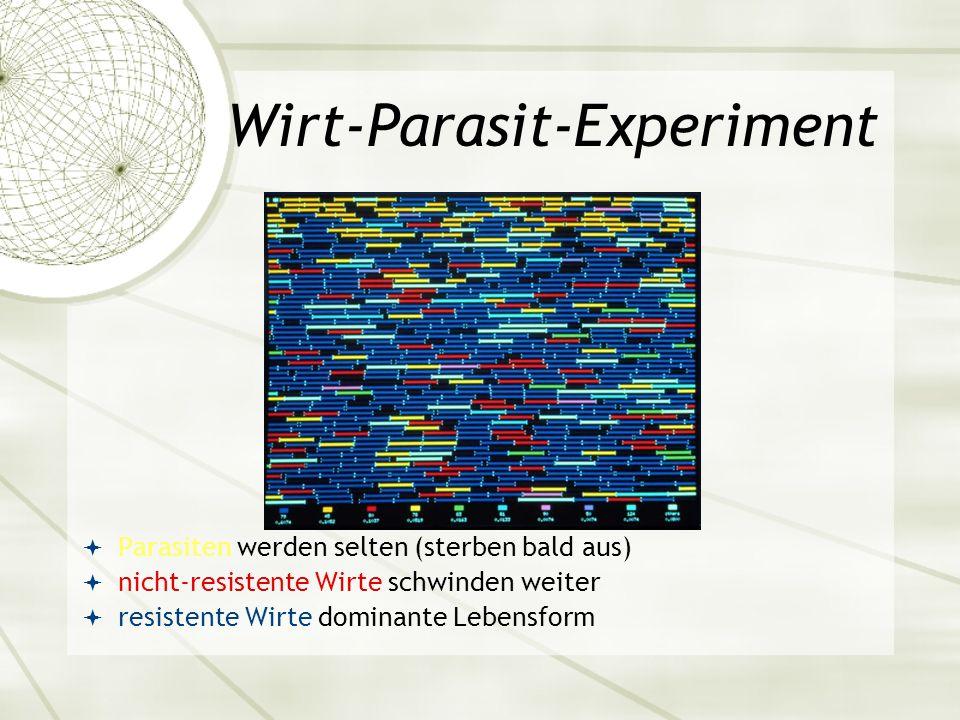Wirt-Parasit-Experiment