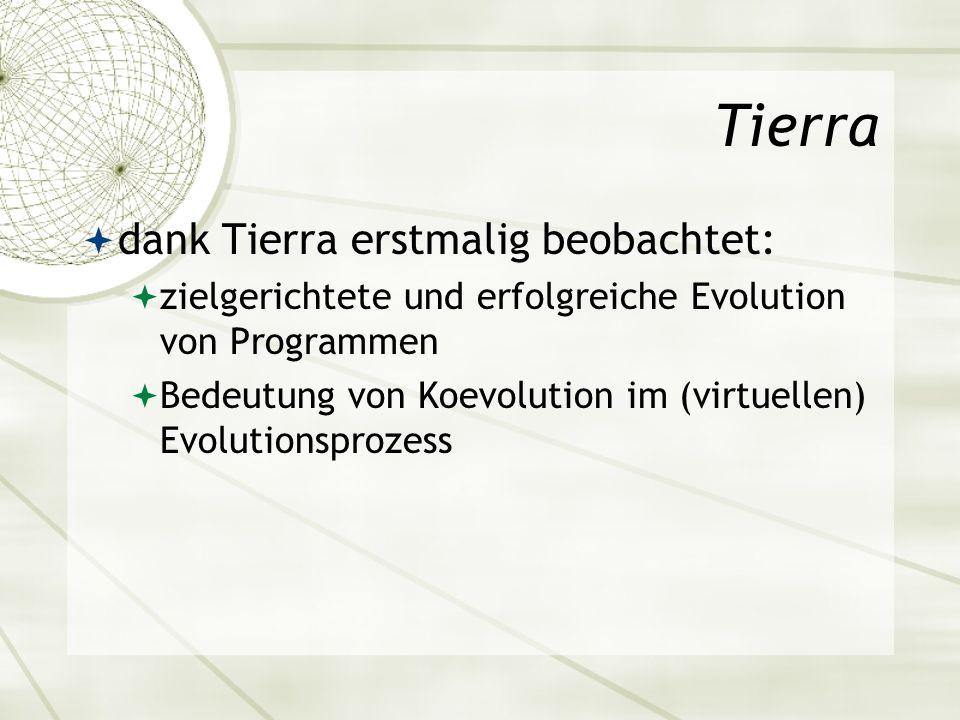 Tierra dank Tierra erstmalig beobachtet: