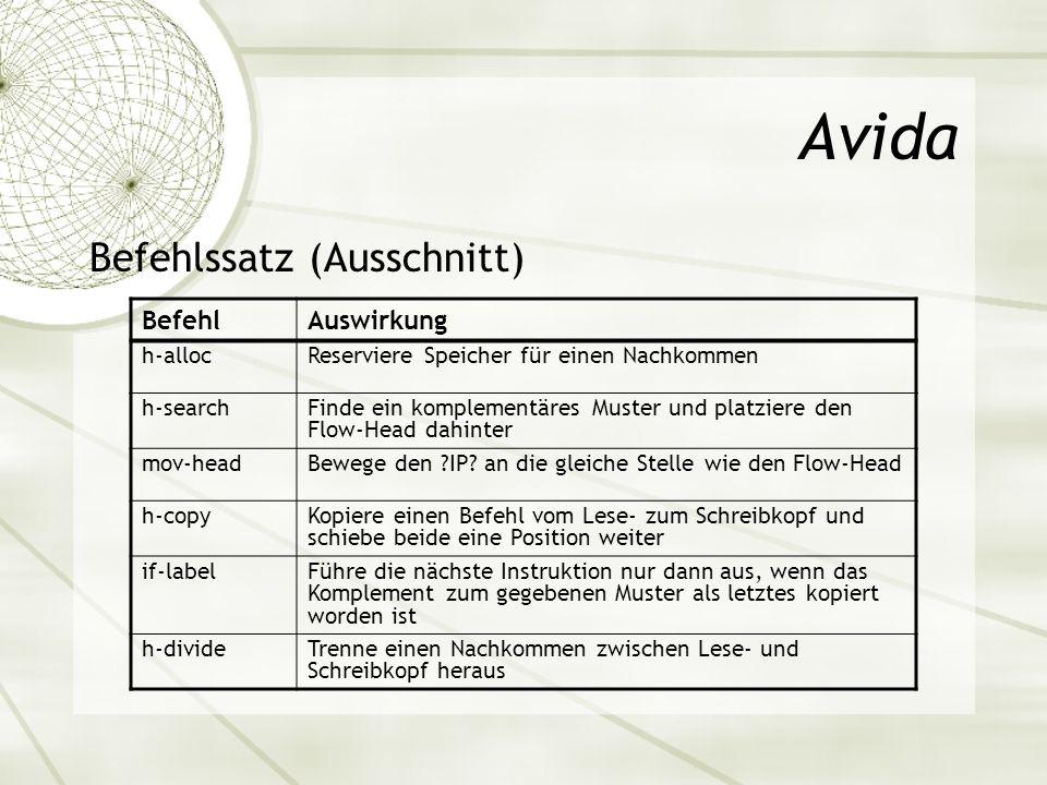 Avida Befehlssatz (Ausschnitt) Befehl Auswirkung h-alloc