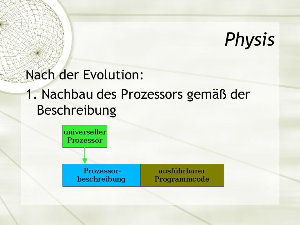 Physis Nach der Evolution: