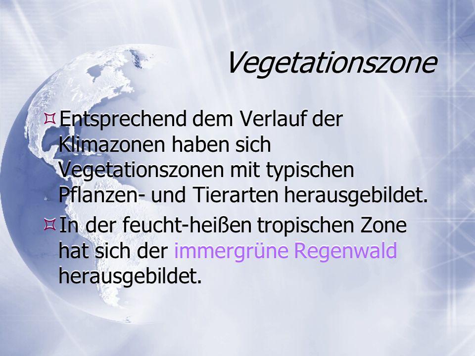 Vegetationszone Entsprechend dem Verlauf der Klimazonen haben sich Vegetationszonen mit typischen Pflanzen- und Tierarten herausgebildet.