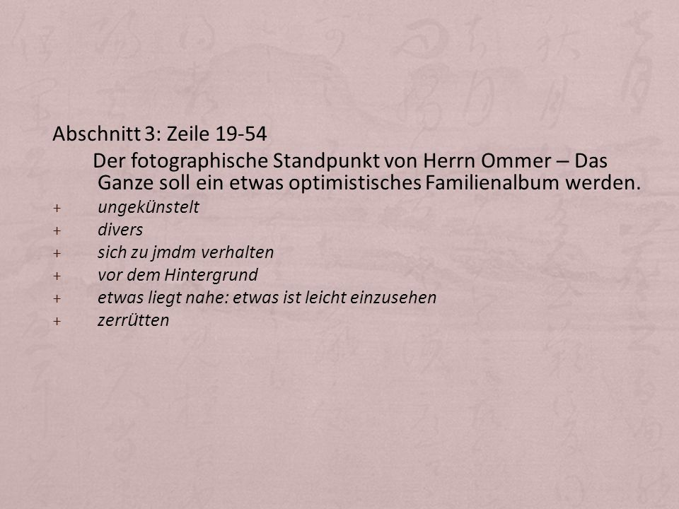Abschnitt 3: Zeile 19-54 Der fotographische Standpunkt von Herrn Ommer – Das Ganze soll ein etwas optimistisches Familienalbum werden.