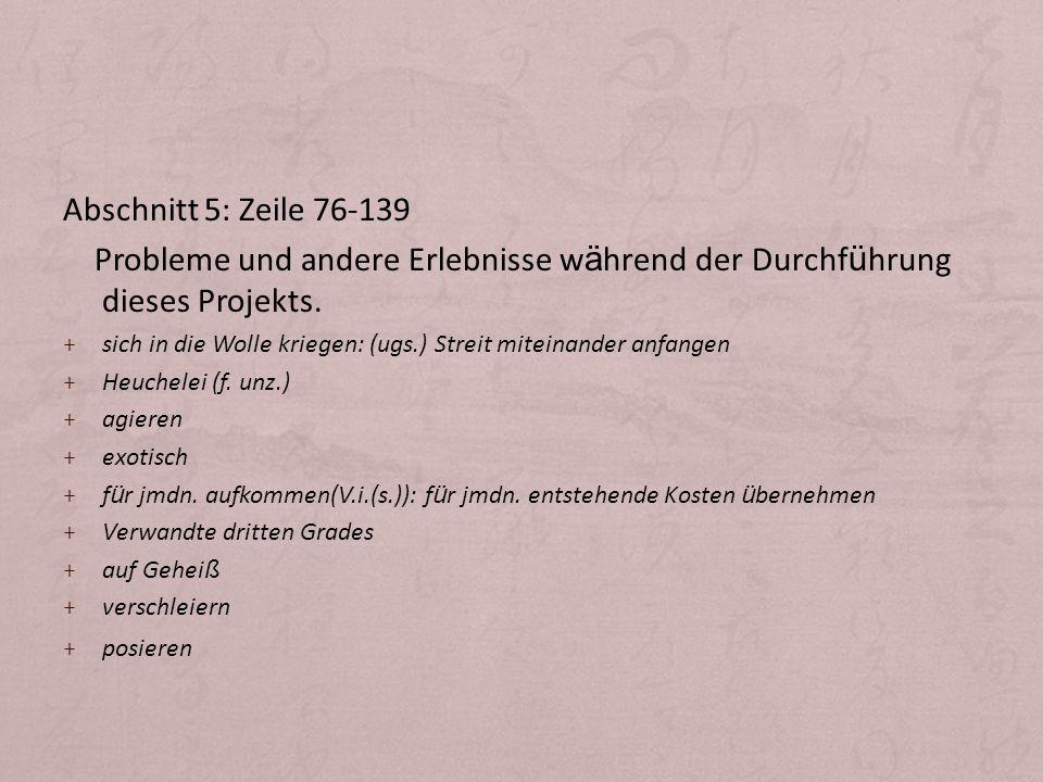 Abschnitt 5: Zeile 76-139 Probleme und andere Erlebnisse während der Durchführung dieses Projekts.